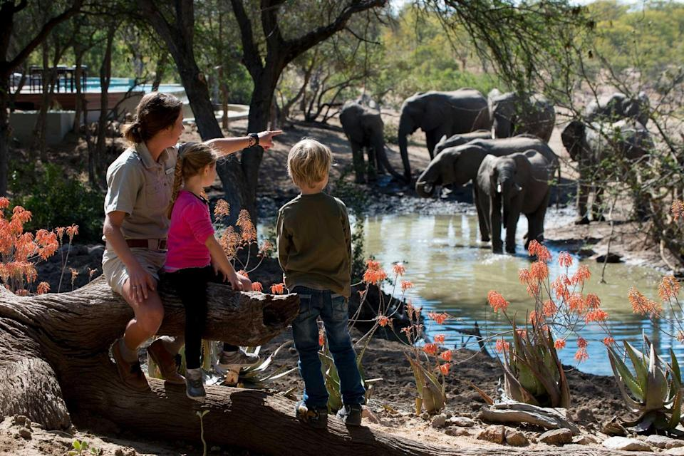 Children look at elephants in a safari camp, with their guide, as part of andBeyond's WILD CHILD program