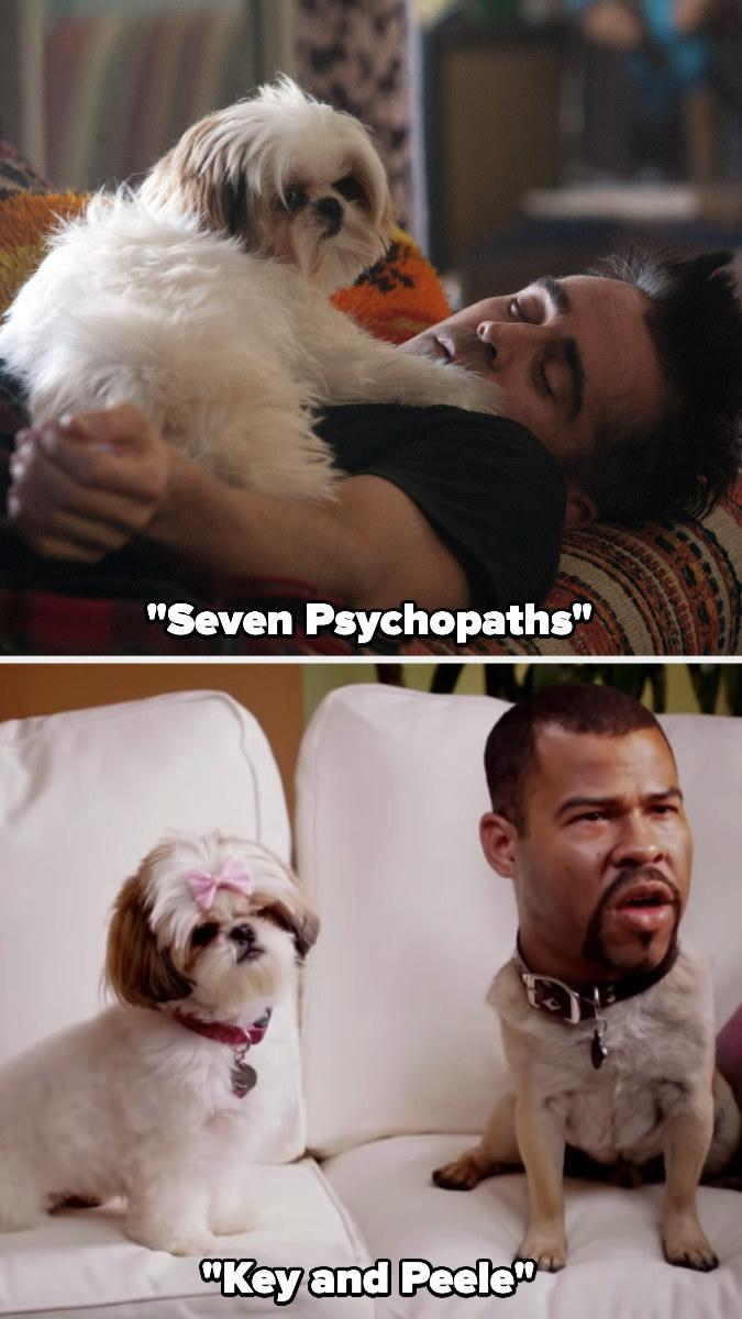 """Bonny in """"Seven Psychopaths"""" and """"Key and Peele"""""""