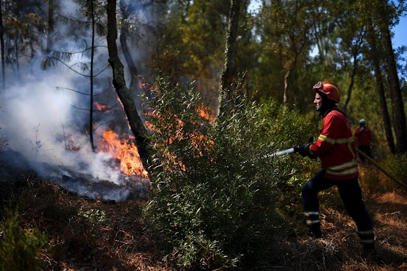 After an uncommonly dry winter and spring, almost 79 percent of the Portuguese mainland was enduring extreme or severe drought at the end of July (AFP Photo/PATRICIA DE MELO MOREIRA)