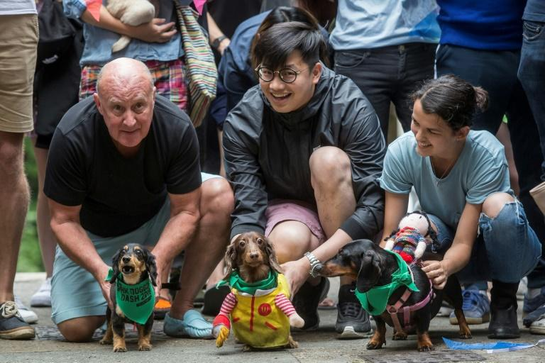 """Owners and their dogs prepare for the start of """"HK Doggie Dash 2018"""""""