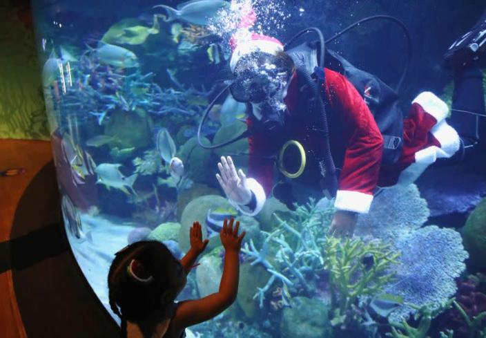 FILE PHOTO: A young visitor is greeted by a diver dressed as Santa Claus at Sea Life aquarium in Bangkok, Thailand