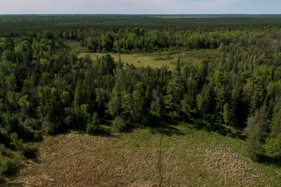 """Canada's """"Everglades of the North"""" has acquired a new protected area"""