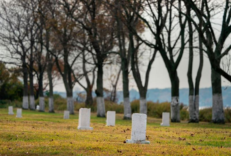 """White stones mark burial sites at the Potter's field on Hart Island, October 25, 2019 in New York. - Elaine Joseph's baby daughter is one of around a million people buried in unmarked mass graves dug by prisoners on an eroding, once-off limits island in New York that's about to become more accessible. Since the late 1860s, unclaimed bodies, the poor, still-born children and AIDS victims have been laid to rest on the mile-long Hart Island, making it one of America's largest public cemeteries. Nicknamed """"the island of the dead,"""" access is heavily restricted. AFP attended the most recent of two escorted media trips a year while relatives can only visit on two days a month chosen by the prisons department. (Photo by Don Emmert / AFP) (Photo by DON EMMERT/AFP via Getty Images)"""