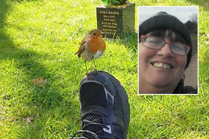 The little robin landed on Ms Robinson's foot as she grieved her young son's death. Source: Facebook