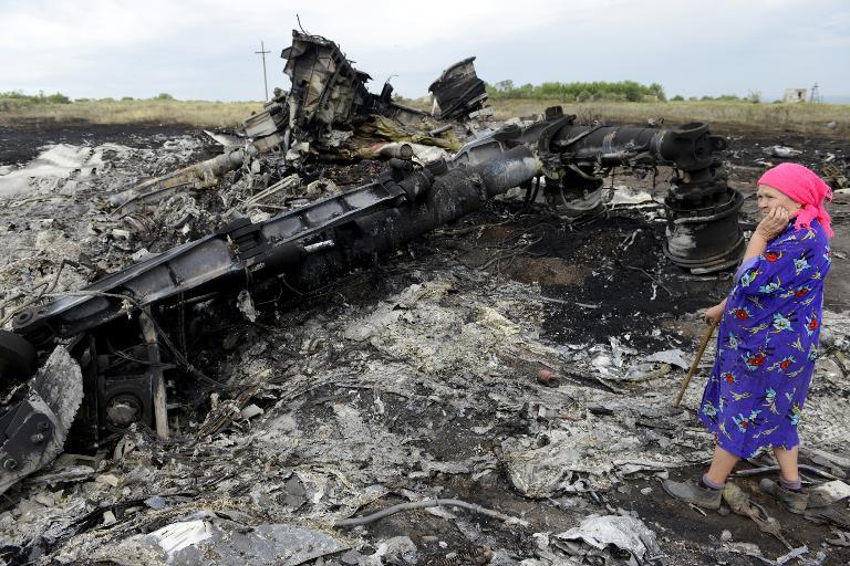 A local resident stands among the wreckage at the site of the crash of a Malaysia Airlines plane in Grabove, in rebel-held east Ukraine, on July 19, 2014