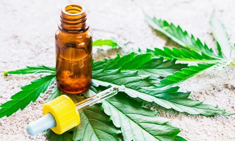 5 differences between cbd and hemp
