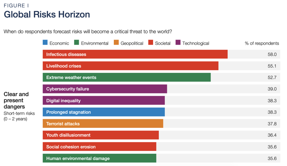 (Source: World Economic Forum Global Risk Report 2021)