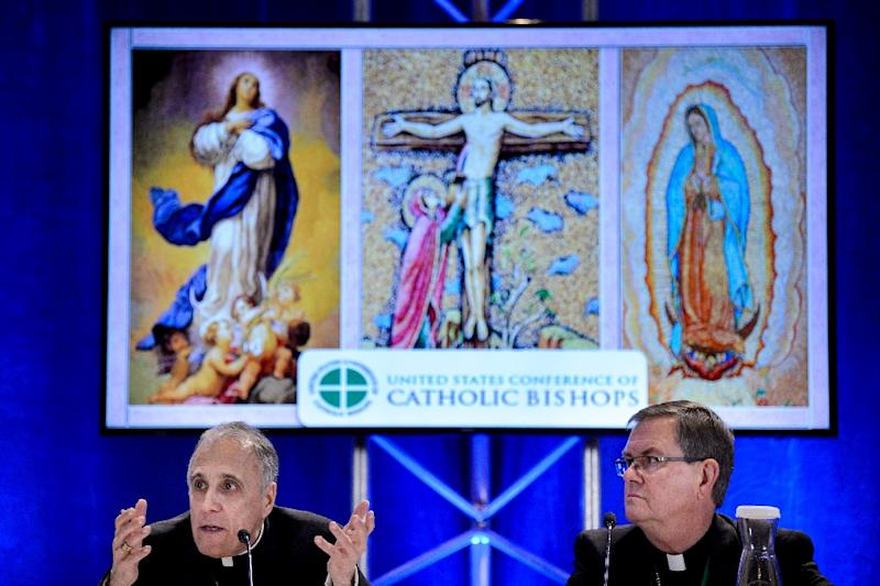 The US Catholic leadership has faced virulent criticism recently over its handling of sexual abuse cases