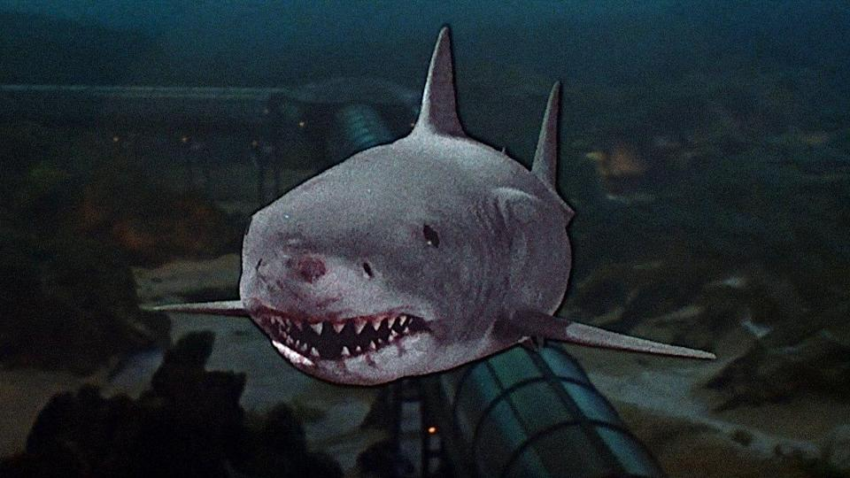 <p><strong><em>Jaws 3-D</em></strong></p><p>A killer shark infiltrates a water park from the ocean, wreaking havoc on unsuspecting visitors.<br></p>