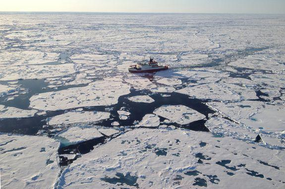 "<img alt=""""/><p>In 2014, scientists clad in thick neon orange suits stepped off a research vessel and visited five different patches of pristine-looking Arctic sea ice. As these researchers discovered, the blinding white ice in the remote north looks awfully pure, but its appearance is deceiving. </p> <p>After removing cores of ice from the frozen ground, the research team found it contained up to 12,000 tiny to microscopic bits of plastic, some from cigarette filters, some from paint, and others that were degraded pieces of common litter. The amount of plastic found was over double the numbers previously seen in Arctic sea ice. </p> <p>The research, <a rel=""nofollow"" href=""https://www.nature.com/articles/doi:10.1038/s41467-018-03825-5"">published Tuesday</a> in <em>Nature Communications</em>, shows that Arctic sea ice doesn't just temporarily trap plastic pollution; the drifting and melting ice cover can also transport this microscopic litter to other oceans, where it melts and enters a new food web. </p> <div><p>SEE ALSO: <a rel=""nofollow"" href=""https://mashable.com/2018/04/11/scientists-challenge-climate-denier-polar-bear-blogs/?utm_campaign=Mash-BD-Synd-Yahoo-Science-Full&utm_cid=Mash-BD-Synd-Yahoo-Science-Full"">Researchers hit back at climate change deniers twisting polar bear science</a></p></div> <p>""In many ways, plastics have stopped surprising us,"" Jennifer Lavers, a research scientist at the University of Tasmania's Institute for Marine and Antarctic Studies, said in an interview. ""We now know that plastics are ubiquitous. They're found from the surface to the deepest depths,"" she said. Lavers was not involved in the new study.  </p> <p>It's not as if there's been a sudden spike in the amount of plastic particles in the Arctic ocean — it's been accumulating there for decades. Rather, the researchers used a more precise method of observing all the plastic fragments in the ice, even pieces just one-sixth the width of a human hair (11 micrometers). </p> <p><img title=""Scientists taking samples of a melt pond on Arctic sea ice."" alt=""Scientists taking samples of a melt pond on Arctic sea ice.""></p> <p>Scientists taking samples of a melt pond on Arctic sea ice.</p><div><p>Image:  Alfred Wegener Institute/ M.Fernandez</p></div><p>This ability to see an unprecedented number of microplastics in the ice was still somewhat eye-opening for researchers.</p> <p>""Overall we were surprised by these high numbers, although, by using this approach, we discovered plastic particles that were only 11 micrometers across, which might partly explain the extremely high numbers we found,"" Ilka Peeken, a marine biologist at the Alfred Wegener Institute's Helmholtz Center for Polar and Marine Research and lead author of the study, said in an email. </p> <p>The researchers used a specialized camera to peer into the sea ice and identify microplastic particles, two-thirds of which were thinner than a human hair. Specifically, the team employed an infrared spectrometer, which involves shooting an invisible type of light (infrared) into the ice sample and then analyzing the wavelengths that bounce back off the particles. Each type of plastic reflects a different ""fingerprint"" of light, telling scientists what type of plastics were trapped in the ice. </p> <p>About half the plastics were of the same six types, which included packing materials, a material used to make cigarette filters (cellulose acetate), paints, and nylon. </p> <h2>Where did the plastics come from?</h2> <p>There were two major sources of microplastic pollution, and the first is well known: the Great Pacific Garbage Patch. </p> <p>Although it's not so much a ""patch"" as it is an area with lots of floating litter, it's undoubtedly huge, <a rel=""nofollow"" href=""https://mashable.com/2018/03/22/great-pacific-garbage-patch-growing-exponentially-larger/?utm_campaign=Mash-BD-Synd-Yahoo-Science-Full&utm_cid=Mash-BD-Synd-Yahoo-Science-Full"">and growing</a>. The patch is now over twice the size of Texas and is rich in the most common type of plastic, called polyethylene. This sturdy plastic was abundant in some ice floes, so the team suspects these Garbage Patch particles drifted by Alaska through the tempestuous Bering Strait and into the Arctic, where they ultimately froze into the ice. </p> <p><img title=""The German research icebreaker Polarstern traveling through the central Arctic Ocean."" alt=""The German research icebreaker Polarstern traveling through the central Arctic Ocean.""></p> <p>The German research icebreaker Polarstern traveling through the central Arctic Ocean.</p><div><p>Image:  Alfred Wegener Institute/ R.Stein</p></div><p>The paint and nylon particles, though, are believed to come from Siberian seas in the Arctic itself. The paint likely comes from thick-hulled vessels and the nylon from fishing nets. ""These findings suggest that both the expanding shipping and fishing activities in the Arctic are leaving their mark,"" Peeken said.</p> <p>As the Arctic <a rel=""nofollow"" href=""https://mashable.com/2018/02/26/arctic-heat-wave-north-pole-february-sea-ice/?utm_campaign=Mash-BD-Synd-Yahoo-Science-Full&utm_cid=Mash-BD-Synd-Yahoo-Science-Full"">continues to experience record warmth</a> and <a rel=""nofollow"" href=""https://mashable.com/2018/03/23/arctic-sea-ice-peak-global-warming-2018/?utm_campaign=Mash-BD-Synd-Yahoo-Science-Full&utm_cid=Mash-BD-Synd-Yahoo-Science-Full"">historic lows in sea ice cover</a> — both in summer and winter — <a rel=""nofollow"" href=""https://mashable.com/2018/02/14/arctic-ship-eduard-toll-navigates-northern-sea-route-without-icebreaker/?utm_campaign=Mash-BD-Synd-Yahoo-Science-Full&utm_cid=Mash-BD-Synd-Yahoo-Science-Full"">more of the sea becomes navigable</a>, and accordingly, new shipping lanes open up. This means more shipping traffic — and more microplastic pollution.</p> <h2>Will these plastics enter the food web?</h2> <p>The Arctic Ocean is connected to both the Pacific and Atlantic Oceans, as well as regional seas, making the fate of liberated plastics from melting ice a key question for scientists to answer. Peeken suspects the plastics will have various fates. </p> <p>One of these, she said, is sinking to the sea floor. Algae and bacteria tend to stick to the small plastics, weighing them down. Researchers have already <a rel=""nofollow"" href=""https://www.sciencedirect.com/science/article/pii/S0025326X17304265?via%3Dihub"">found high concentrations of plastics</a> embedded in sea floors around the world. But this doesn't mean the plastics get sequestered down there for good. Sea creatures commonly eat off the sea floor, so plastics could still enter the food web after sinking.</p> <p>Or, said Peeken, marine creatures could simply swallow floating plastics after the ice melts, and the plastics could then be incrementally passed up the food chain.</p> <p><img title=""Scientists prepare an Arctic sea-ice core for microplastic analysis."" alt=""Scientists prepare an Arctic sea-ice core for microplastic analysis.""></p> <p>Scientists prepare an Arctic sea-ice core for microplastic analysis.</p><div><p>Image:  Alfred Wegener Institute/ T.Vankann</p></div><p>It's clear how large plastic debris harms, and can kill, sea life. In February, for instance, a dead sperm whale washed up onto a Spanish beach. Inside the whale's stomach, <a rel=""nofollow"" href=""https://mashable.com/2018/04/12/sperm-whale-dies-64-pounds-of-trash/?utm_campaign=Mash-BD-Synd-Yahoo-Science-Full&utm_cid=Mash-BD-Synd-Yahoo-Science-Full"">scientists found 64 pounds of trash</a>, which they believe caused a deadly internal inflammation.</p> <p>Microplastics, however, have the potential to harm anything that eats, not just the largest denizens of the ocean. </p> <p>""Microplastics have opened the floodgates,"" said Lavers. Everything from tiny, shrimp-like krill to massive whales are now at risk, she said.</p> <p>""Wildlife has been adapted to identify things in the ocean,"" said Lavers. ""And if they can see it, they can eat it.""</p> <p>It's not fully understood, though, how <a rel=""nofollow"" href=""https://www.sciencedirect.com/science/article/pii/S0269749116305620#bib91"">microplastics might harm marine or human life</a>, said Peeken. So far, the research is inconsistent, and as is common, more needs to be done.</p> <p>Peeken noted that fish exposed to microplastics have <a rel=""nofollow"" href=""https://pubs.acs.org/doi/abs/10.1021/es5053655"">shown behavioral disorders</a> and inflammatory reactions in muscle tissue. But other research showed no effect on marine life, as the small plastics just passed through the animals, she said.</p> <p>Still, Lavers said this is no excuse to ignore the growing plastic pollution problem. Plastic never goes away, but just continues to break down into smaller pieces. For this reason, even individual actions, like throwing away a plastic bottle, are consequential. That bottle, she said, can become 10,000 imperceptible particles, floating in the sea.</p> <p>""Just because you can't see it, doesn't mean it's not there,"" she said.</p> <div> <h2><a rel=""nofollow"" href=""https://mashable.com/2018/04/09/nasa-dummies-crash-testing-airplane-astronauts/?utm_campaign=Mash-BD-Synd-Yahoo-Science-Full&utm_cid=Mash-BD-Synd-Yahoo-Science-Full"">WATCH: NASA is using dummies to test the impact aircraft crashes may have on the human body</a></h2> <div> <p><img alt=""Https%3a%2f%2fblueprint api production.s3.amazonaws.com%2fuploads%2fvideo uploaders%2fdistribution thumb%2fimage%2f85475%2fd2e7247e 8997 4d46 b84d 7137dbccb501""></p>   </div> </div>"