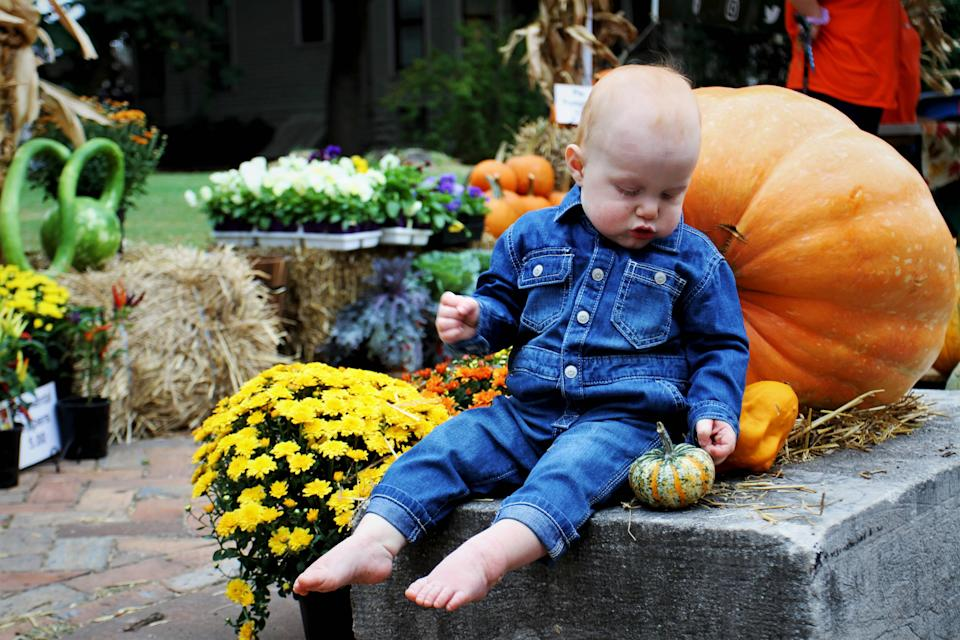 Ten-month-old Easton Fitzgeralds inspects a pumpkin at the 22nd annual Cider Days in Springfield, Mo., on Sept. 22, 2019. Last year's event was canceled because of the coronavirus pandemic, but the event is returning this year from Sept. 18-19.