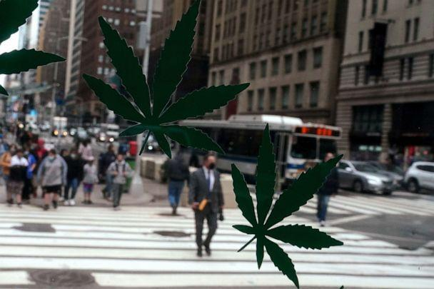 PHOTO: Cannabis stickers on a Weed World store window are pictured the day New York State legalized recreational marijuana use amid the coronavirus disease (COVID-19) pandemic in New York City, March 31, 2021. (Carlo Allegri/Reuters)