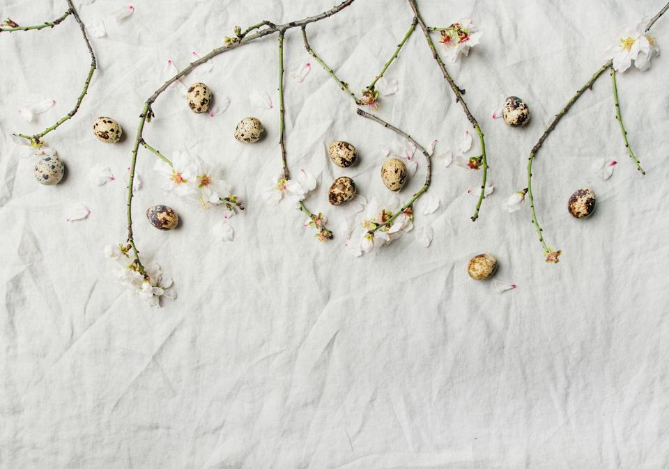 """<p>""""Easter is a time for color, celebration, and a chance to refresh and welcome spring. I always incorporate organic elements and for Easter, that means wheat grass in trays with small quail eggs, colorful bunches of carrots and branches with blossoms."""" <em>—<a href=""""http://www.birdbakery.com/about/"""" rel=""""nofollow noopener"""" target=""""_blank"""" data-ylk=""""slk:Elizabeth Chambers Hammer"""" class=""""link rapid-noclick-resp"""">Elizabeth Chambers Hammer</a>, Co-Founder, BIRD Bakery </em></p>"""