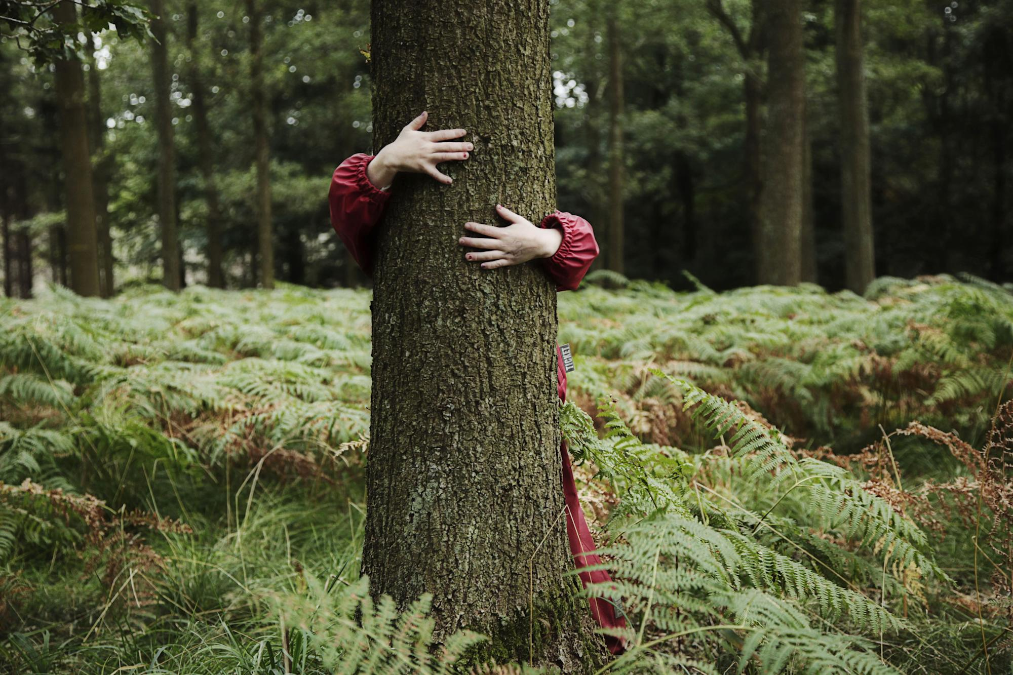 Spending time among trees helps children to grow (and cuts their risk of emotional problems)
