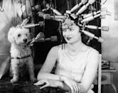 <p>A Manhattan socialite and her precious pup use an interesting contraption to add some waves in their luscious locks. </p>