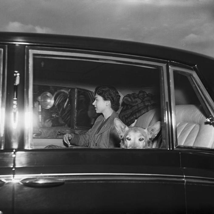 "<p>Susan even went on <a href=""https://www.tatler.com/gallery/where-the-royal-family-went-on-honeymoon"" rel=""nofollow noopener"" target=""_blank"" data-ylk=""slk:the Queen's honeymoon with Prince Philip"" class=""link rapid-noclick-resp"">the Queen's honeymoon with Prince Philip</a>, according to Tatler. Elizabeth smuggled her to the train station under a bunch of blankets. (Remember, she wasn't the Queen yet and would have had a harder time breaking the rules.) One can only guess what Philip thought about Susan popping up mid-honeymoon trip.</p>"