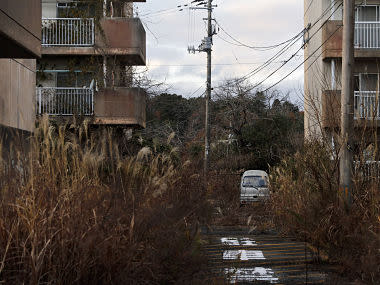 Tokyo 2020 showpiece event being billed as 'Recovery Olympics', but for many in Fukushima life remains a struggle