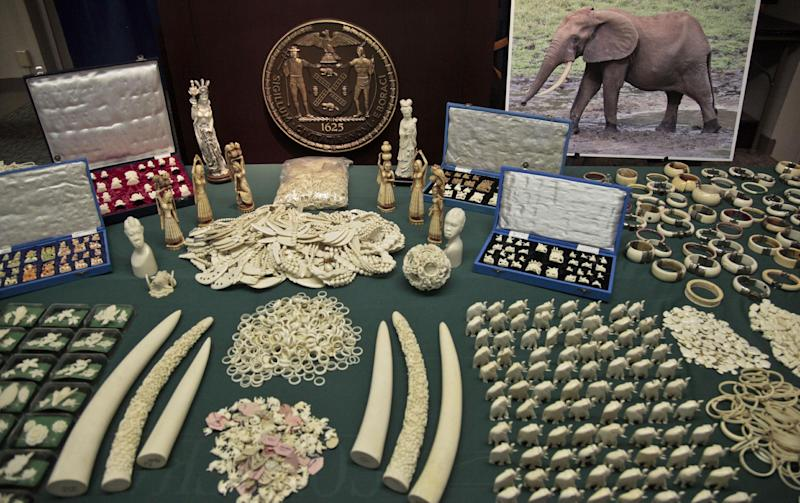 2 NY jewelers plead guilty to illegal ivory sales