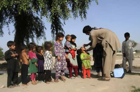 Children in a line look on as a girl receives a polio vaccination during an anti-polio campaign on the outskirts of Jalalabad, in this file picture taken August 18, 2014. REUTERS/Parwiz