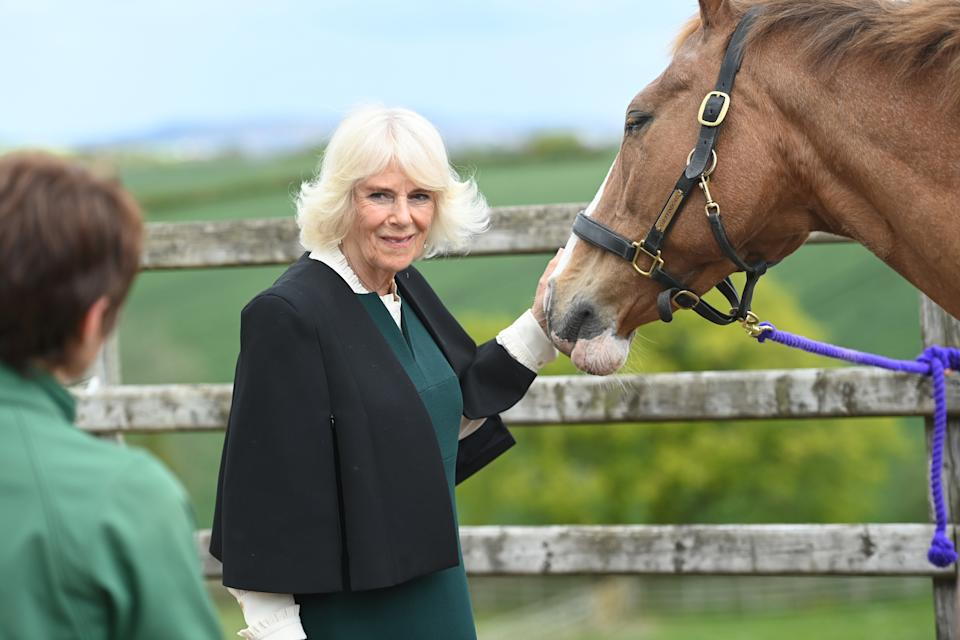 COMBER, NORTHERN IRELAND - MAY 19: Camilla, Duchess of Cornwall strokes a horse as she visits Horses for People on May 19, 2021 in Comber, Northern Ireland. (Photo by Tim Rooke - Pool/Getty Images)