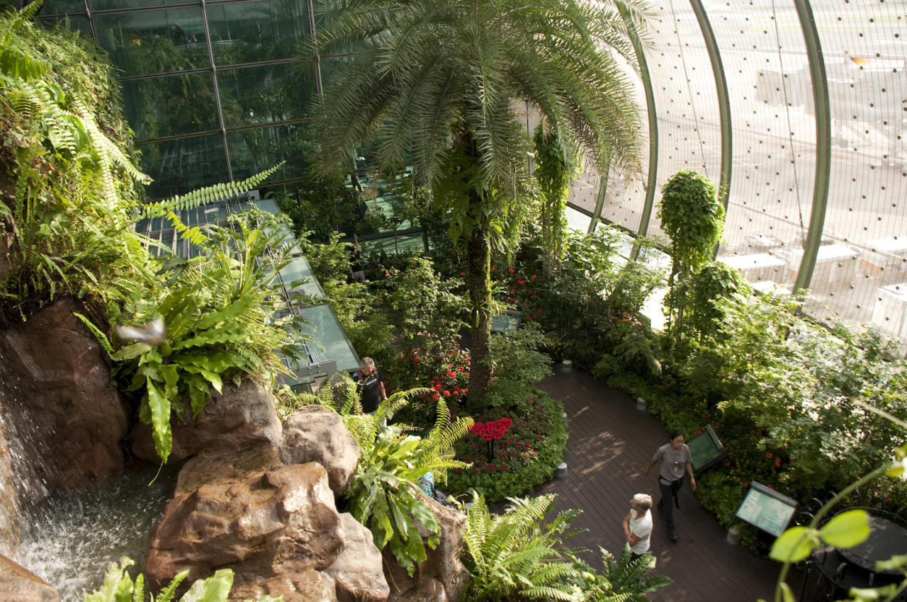 <p>Changi International Airport has been named the world's best airport for the seventh year running – a history-making achievement. But it's hardly surprising that travellers leave satisfied with a cactus garden, butterfly park and cinema – who would even bother going on holiday? <em>[Photo: Getty]</em> </p>