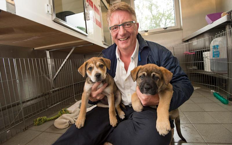The RSPCA received more than 1.15m calls to its hotline last year - Paul Grover