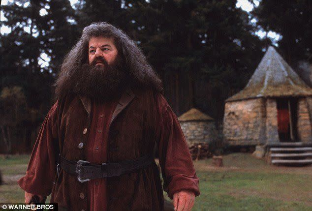 """<a href=""""https://www.walmart.com/ip/Deluxe-Hagrid-Adult-Costume/304938694"""" target=""""_blank"""">Get the look</a>."""