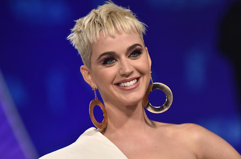 Katy's fans have slammed Josh Kloss for accusing her. photo: Getty Images