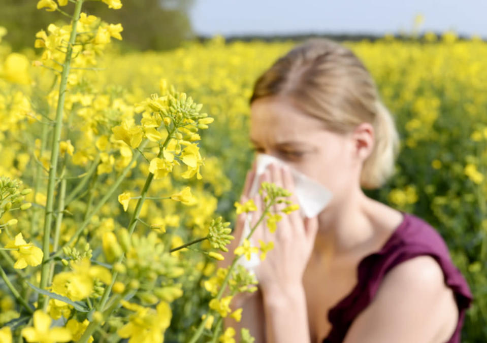 Spring allergies are nothing to sneeze at