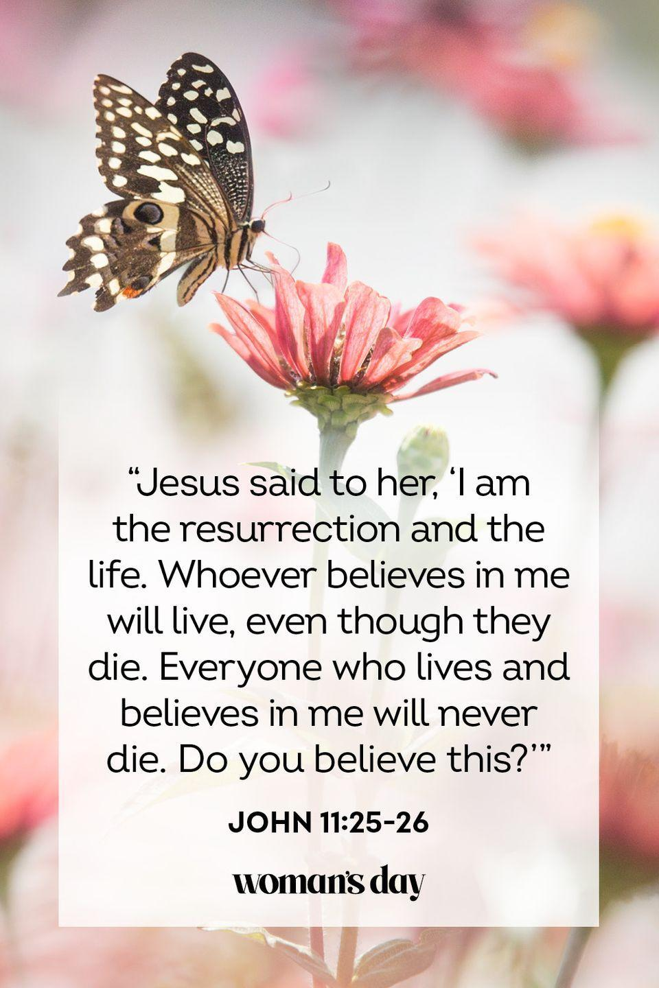 "<p>""Jesus said to her, 'I am the resurrection and the life. Whoever believes in me will live, even though they die. Everyone who lives and believes in me will never die. Do you believe this?'""— John 11:25-26</p>"