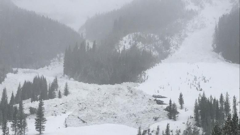 Backcountry users warned to tread carefully as avalanche season begins