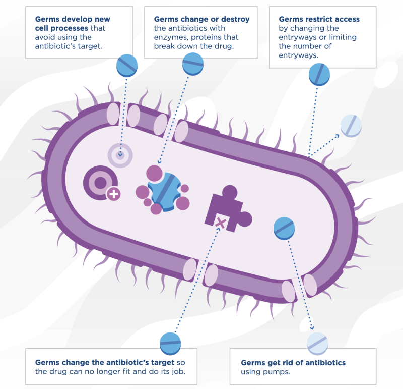 This is how germs become antibiotic-resistant. (Graphic: CDC)