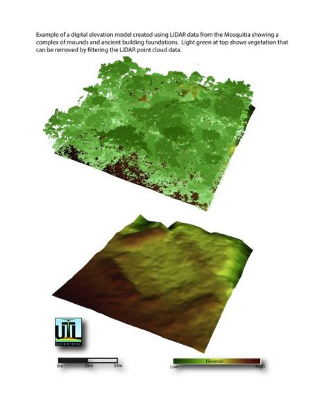 Square structures may mark the foundations of ancient buildings in the Honduran rainforest.