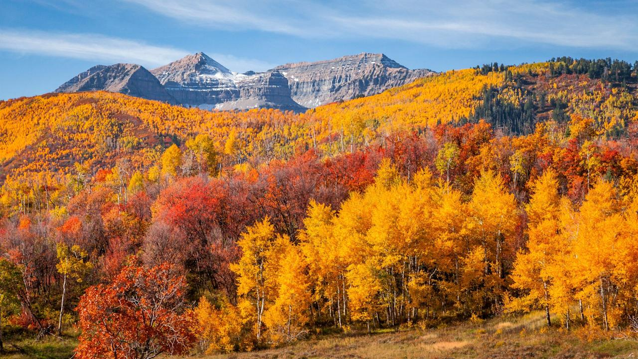 "<p>As sad as we are to step away from the days of summer, at least we can look forward to the breathtaking visual of when the trees transition into their autumn colors. These seriously gorgeous photos of <a href=""https://www.redbookmag.com/life/g28999486/things-you-never-knew-about-fall/"" target=""_blank"">fall</a> scenery are going to make you want to wrap yourself in a giant, knitted sweater, curl up on the couch, and sip on a something pumpkin spice flavored. </p>"