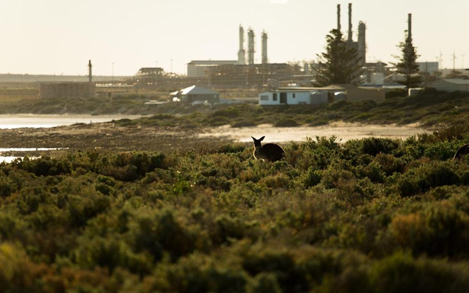 Whyalla's industrial landscape - Phoebe Smith