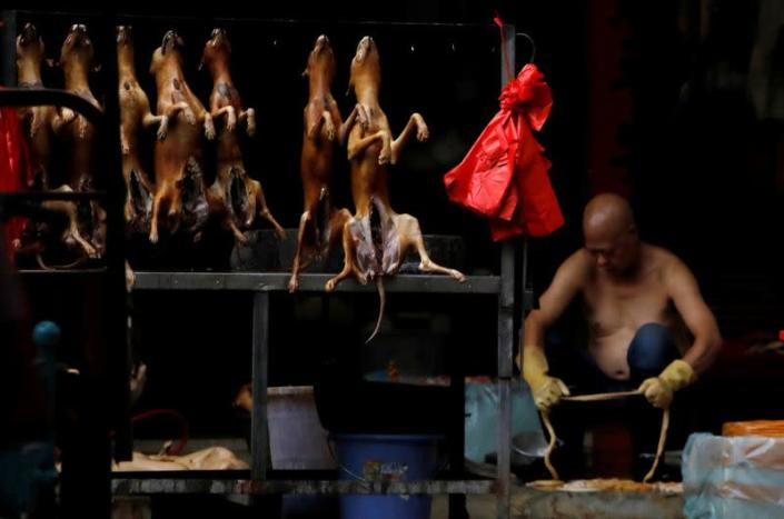 FILE PHOTO: Butchered dogs displayed for sale during the local dog meat festival in Yulin