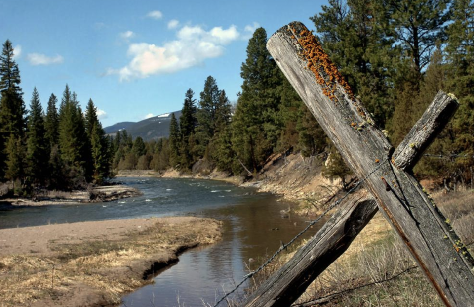 This photo, shows Jacobsen Creek, a tributary of the North Fork of the Blackfoot River near Ovando, where a grizzly bear attacked and killed a person who was camping. Source: Jennifer Michaelis/The Missoulian via AP