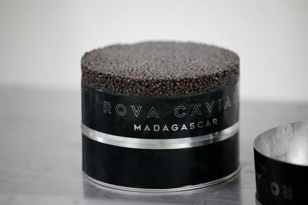 A can of Rova caviar is seen in the processing line at the Acipenser fish farm in Ambatolaona