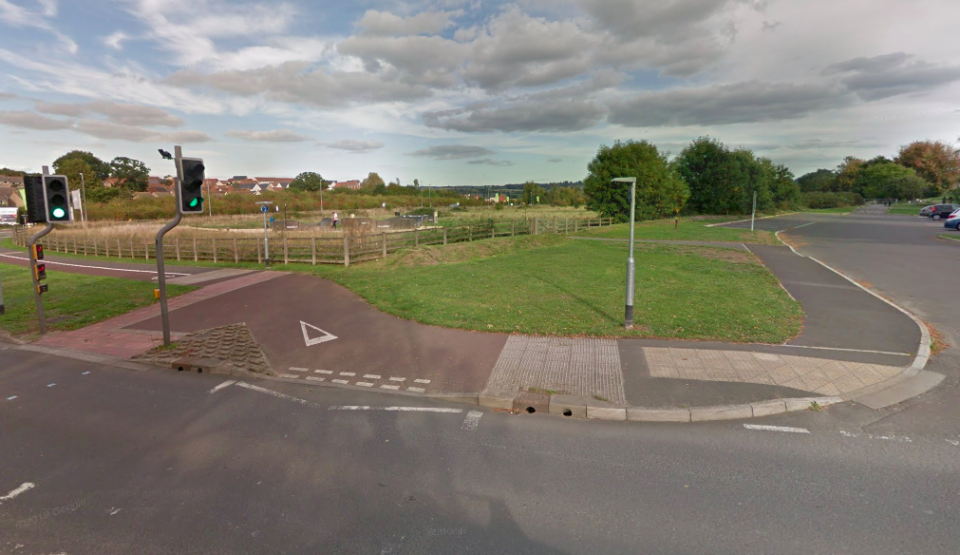 <em>The animal was found on wasteland near Lyde Road in Yeovil on Saturday morning (Google)</em>
