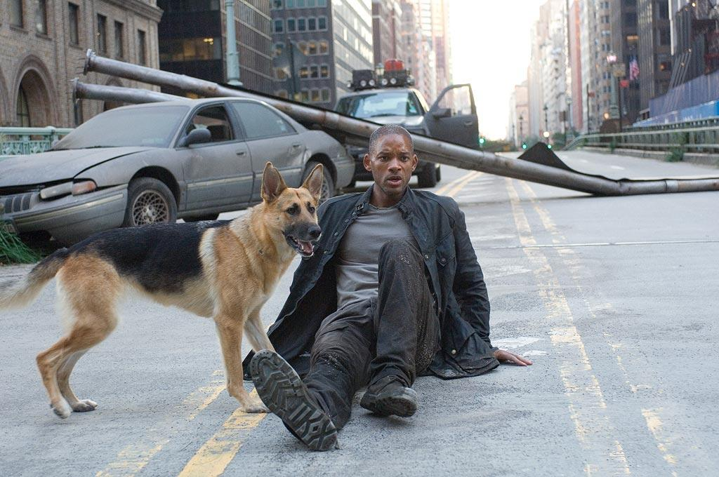 """28. <a href=""""http://movies.yahoo.com/movie/1809768369/info"""">I AM LEGEND</a>    In the most recent adaptation of Richard Matheson's classic novel, <a href=""""http://movies.yahoo.com/movie/contributor/1800019959"""">Will Smith</a> battles not only an army of mindless, light-sensitive killers but also the solitude that threatens to drive him mad."""
