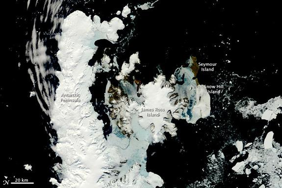 Summer was rapidly approaching when the Moderate Resolution Imaging Spectroradiometer (MODIS) on NASA's Terra satellite caught this rare, nearly cloud-free view of the northern tip of the Antarctic Peninsula.