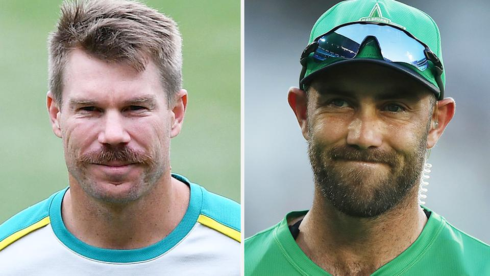 David Warner said he was 'surprised' by the AU$2.5 million Glenn Maxwell fetched in the recent IPL 2021 auction from the Royal Challengers Bangalore. Pictures: Getty Images