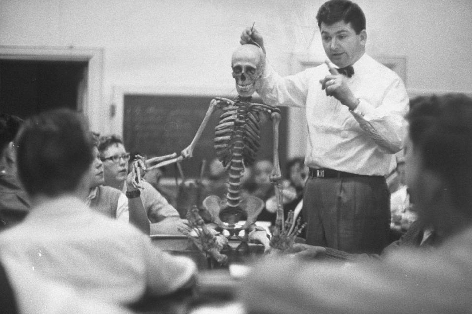 <p>A teacher uses a skeleton to illustrate his point during a science lecture. </p>