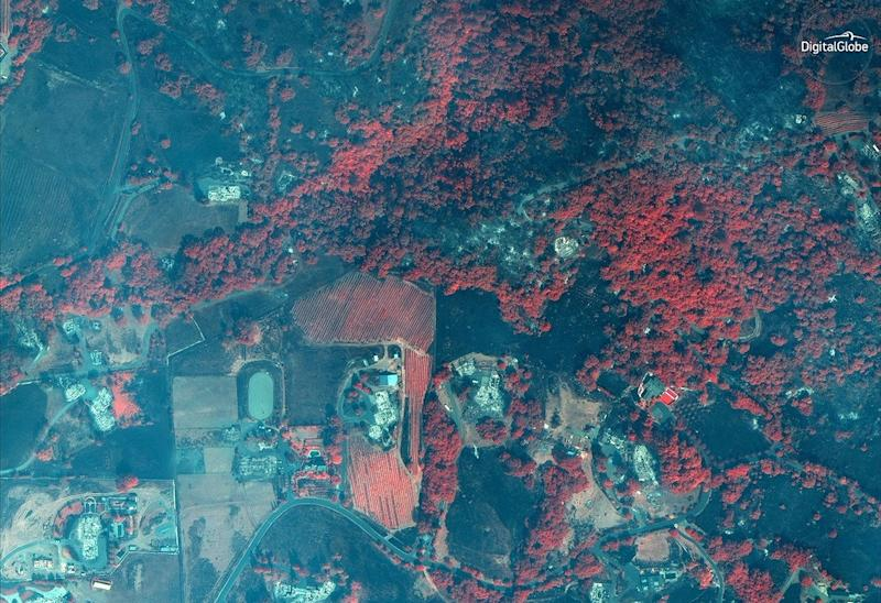 The red areas in this infrared satellite image represent living vegetation among burned-out homes in Santa Rosa.