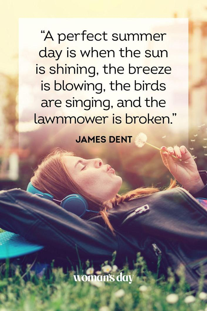 """<p>""""A perfect summer day is when the sun is shining, the breeze is blowing, the birds are singing, and the lawnmower is broken.""""</p>"""