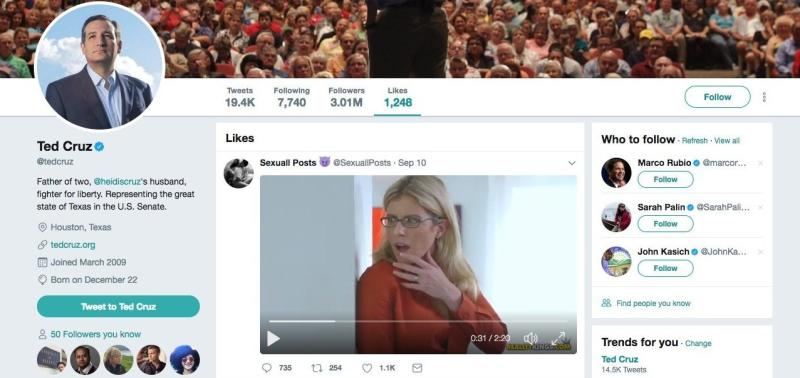 "A screenshot showing a ""like"" in Ted Cruz's Twitter account for a porn video."