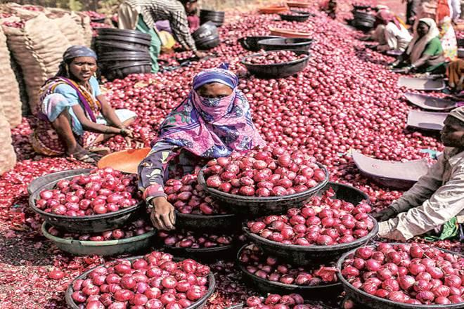 Retail onion prices, Onion crisis, Onion price in delhi NCR, APMC, onion wholesale prices, Lasalgaon, kharif plantation