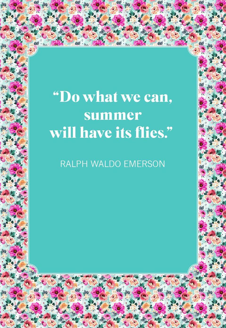 """<p>""""Do what we can, summer will have its flies.""""</p>"""
