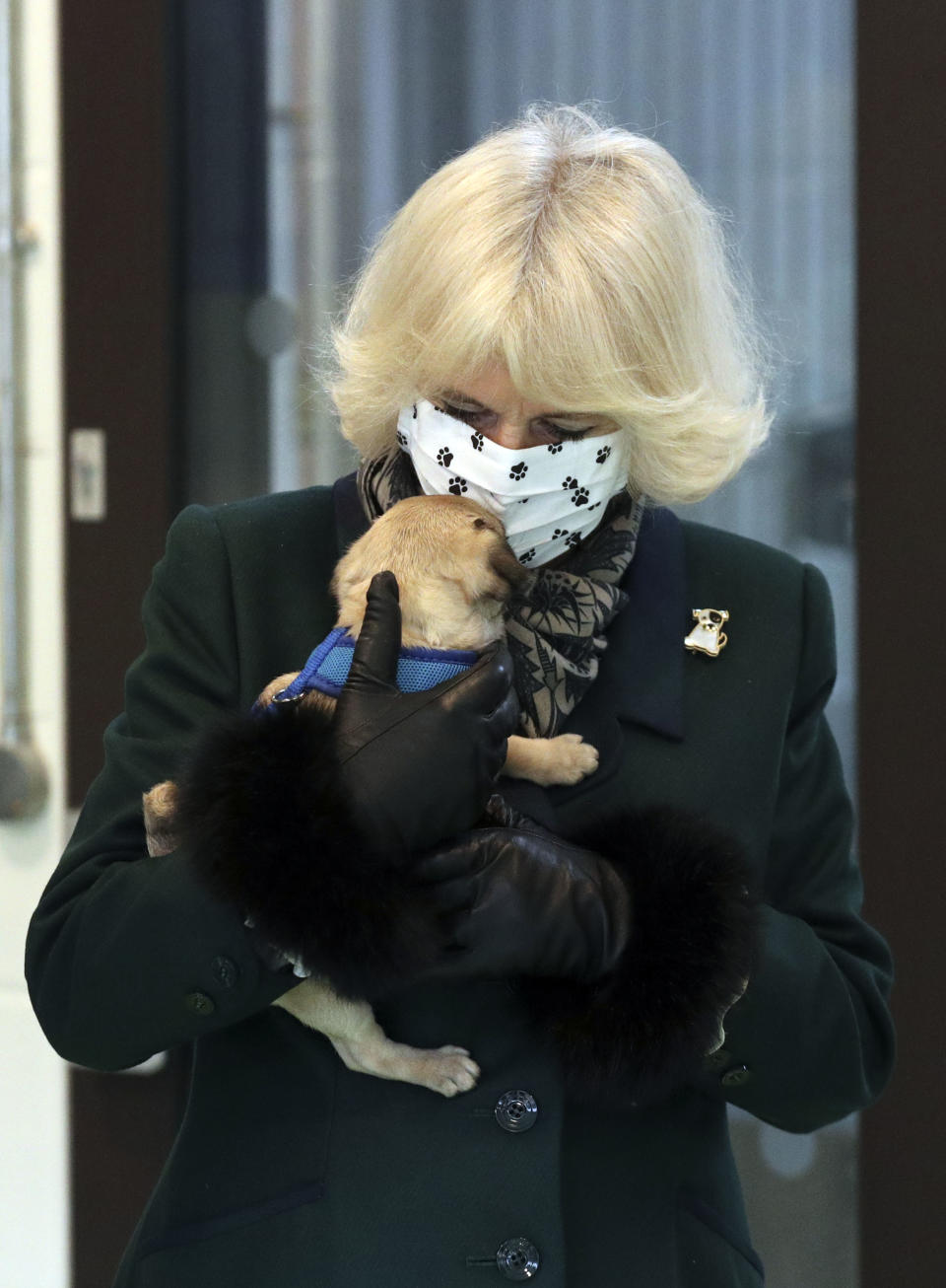 WINDSOR, ENGLAND - DECEMBER 09: Camilla, Duchess of Cornwall meets a Pug Puppy called Ernie as she visits the Battersea Dogs and Cats Home to open the new kennels and thank the centre's staff and supporters on December 9, 2020 in Windsor, United Kingdom. (Photo by Steve Parsons - WPA Pool/Getty Images)