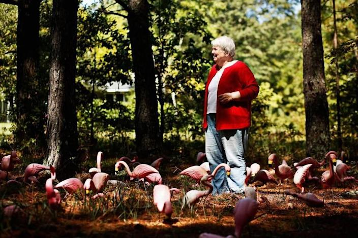 Mystery writer Margaret Maron stands among a collection of misfit flamingoes at her family farm in Johnston County on Sept. 14, 2016.